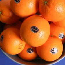 퓨어스팩/썬키스트 정품 고당도 블랙라벨 오렌지 40과 (중과)_추가이미지